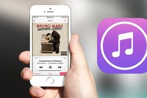 Como pasar musica iPhone iTunes