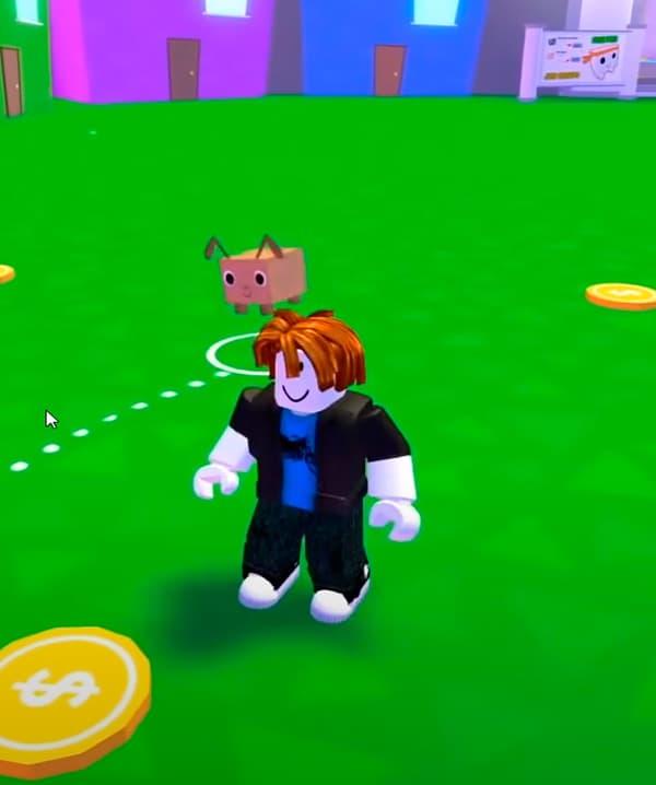 Pet Simulator